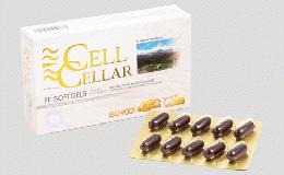 最強のプラセンタ CELL CELLAR(買っても大丈夫)